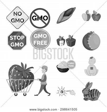 Vector Illustration Of Transgenic And Organic Logo. Collection Of Transgenic And Synthetic Stock Vec
