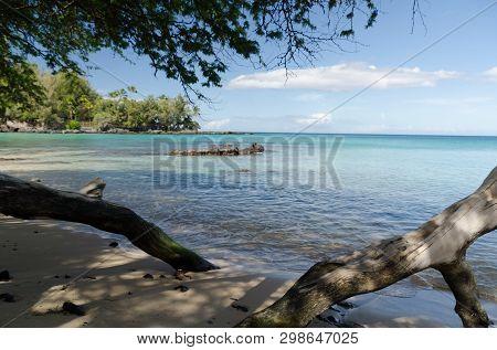 Beautiful Trees Framing Serenity Of Waialea  Beach, Puako Bay, Waimea, Big Island, Hawaii