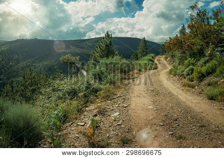 Dirt Road Passing Through Hilly Terrain Covered By Bushes And Trees, On Sundown At The Highlands Of