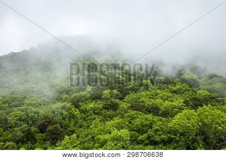 Fog In The Mountains.mystical Landscape.the Green Tops Of The Hills Are Covered With Thick Fog. The