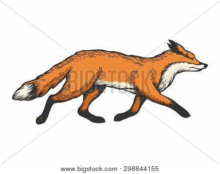 Running Fox Animal Color Sketch Engraving Vector Illustration. Scratch Board Style Imitation. Black