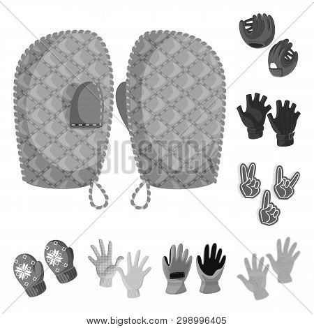 Vector design of property and distinctive sign. Set of property and textile stock vector illustration. poster