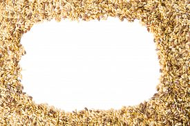 Mixed Seeds Gold And Brown Linseed, Flax Seed Pattern Frame