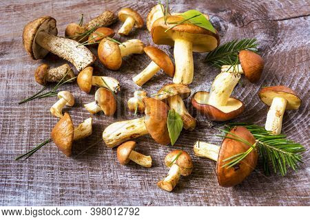 Summer Forest Mushrooms On The Rustic Wooden Background. Fresh Raw Mushrooms On The Table.