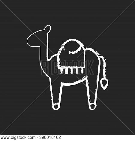 Camel Chalk White Icon On Black Background. Big Animal With Two Water Bags Used For Long Walks Throu