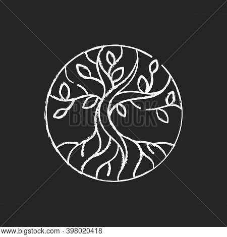 Life Tree Chalk White Icon On Black Background. Metaphor For Torah. Earth And Heaven Connection. Heb