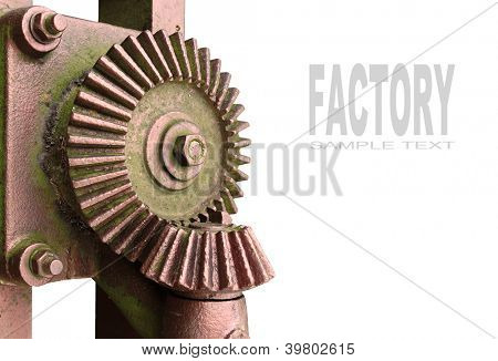 Bronze gear wheel with space for your text.