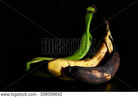 A Picture Of Three Ordinary Bananas, Without Modifications..as You Know From The Shop. The Picture S