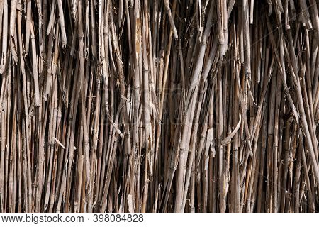 Close-up Of The Reed Straw. Bundle Of Straw Front View. Background Or Texture Of Old Dry Gray Straw,