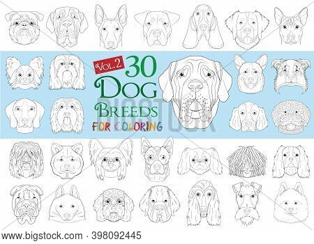 Dog Breeds Collection Volume 2: Set Of 30 Different Dog Breeds For Coloring In Cartoon Style.