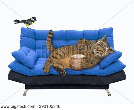 A Beige Lazy Cat Is Lying On A Blue Divan And Eating Sour Cream From A Clay Pot. White Background. I