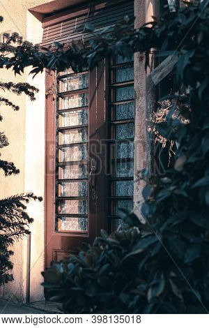 Old Wooden Door With Sunset Light And Green Plants In Catalunya Spain