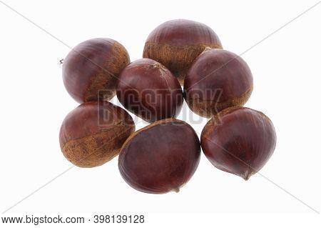 Fresh Chestnuts With Peeled Roasted Chestnut Isolated On White Background. Hippocastanum Isolated. I