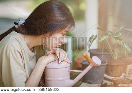 Asian Women Contemplating Planting Trees, Cultivation And Caring For Indoor Potted Plants.