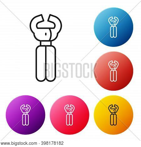Black Line Clippers For Grooming Pets Icon Isolated On White Background. Pet Nail Clippers. Set Icon