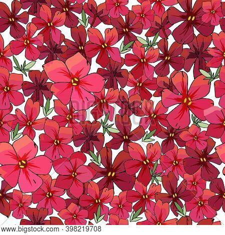 Seamless Pattern With Flowers Isolated On White.
