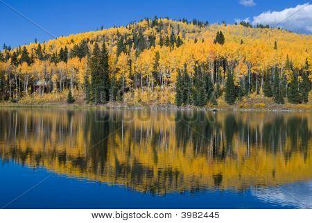 Carp Lake