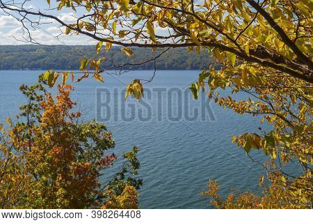 The Leaves Of A Tree Located Near A Lake, Turn From Green To Yellow During The Autumn Season.