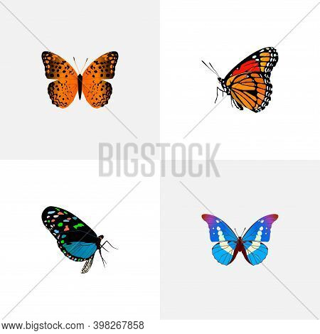 Set Of Beauty Realistic Symbols With Monarch, Bluewing, Painted Lady And Other Icons For Your Web Mo