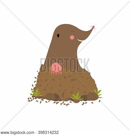 Mole Digging Out Of The Mud Animal Cartoon Character, Cheerful