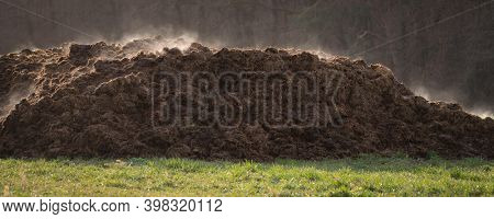 Pile of manure on an agricultural field for growing bio products