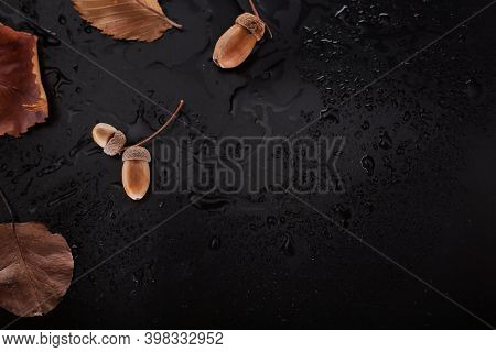 Background Of Dry Autumn Leaves On A Wet Background