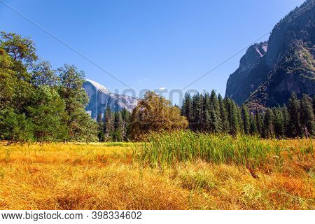 Autumn yellowed grass in the meadows of the valley. Yosemite Valley. Yosemite Park is located on the slopes of the Sierra Nevada.