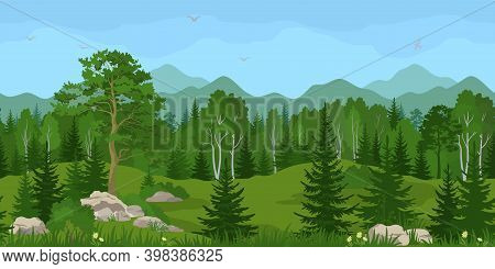 Seamless Horizontal Summer Mountain Landscape With Pine, Birch And Fir Trees, Green Grass And Yellow