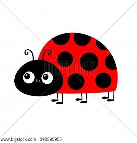 Lady Bug Ladybird Insect. Ladybug Icon. Cute Cartoon Kawaii Funny Baby Character. Side View. Happy V