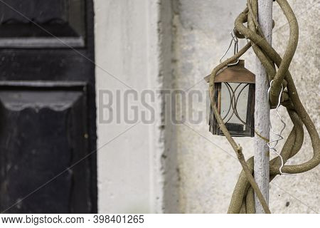Old Vintage Lantern Hanging From A Vine Trunk. Concept Of Conservation Of Ancient Objects.