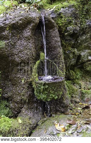 Natural Environment With Cascading Water In The Mountains. Bucket That Collects Water With Moss.