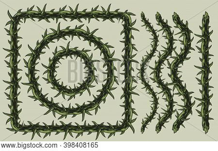 Vintage Pattern Brush Of Barbed Wire With Elegant Spikes In Green Colors Isolated Vector Illustratio