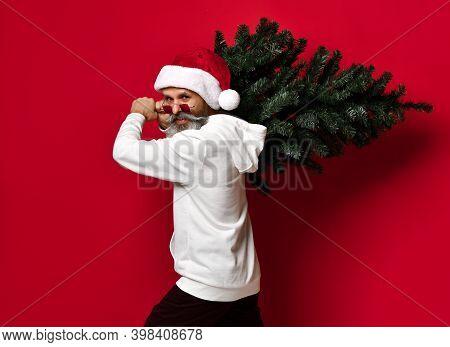 Christmas, New Year, Holidays. Santa Man Carrying Christmas Tree. Christmas Decor Concept. Bearded M