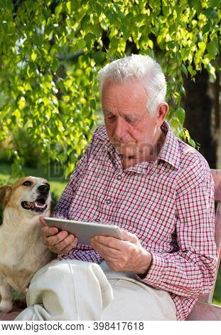 Old Man Sitting On Bench In Park With Dog Beside Him And Looking At Tablet