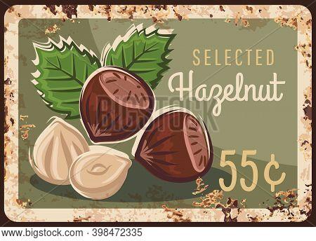 Hazelnut Nuts, Hazel Metal Rusty Plate, Price Sign Or Farm Market Menu, Vector Retro Poster. Organic