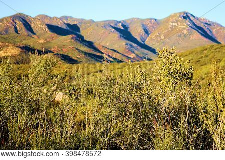 Barren Mountains Covered With Chaparral Shrubs Taken On The High Desert Plain At Arid Badlands In Th
