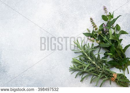 Bunches Of Fresh Sprigs Of Mint And Rosemary. Grey Concrete Background. Copy Space.