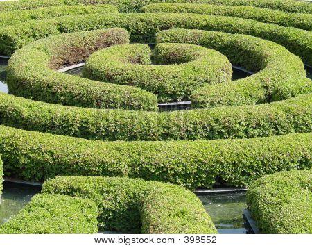 Maze Garden.