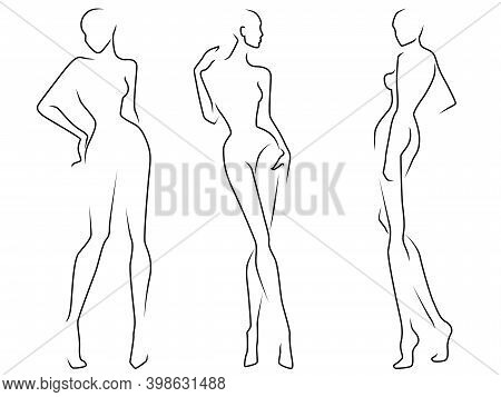Abstract Of The Bodies Of Elegant Three Women, Black Contour Isolated On The White Background, Hand
