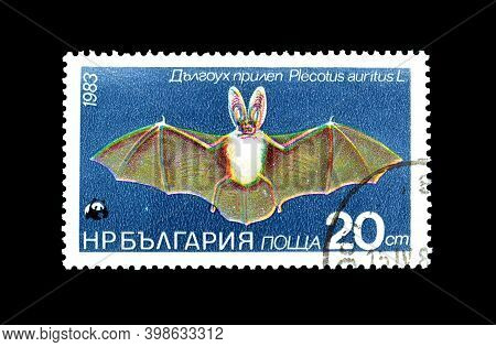 Bulgaria - Circa 1983 : Cancelled Postage Stamp Printed By Bulgaria, That Shows Brown Long-eared Bat