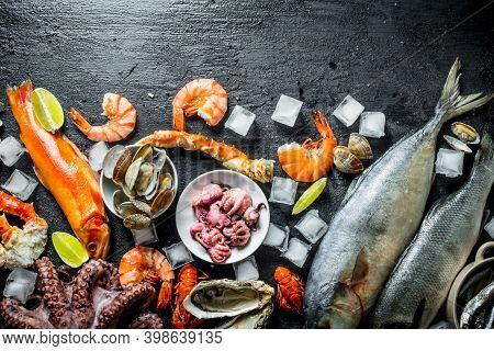 Various Seafood With Ice. On Rustic Background