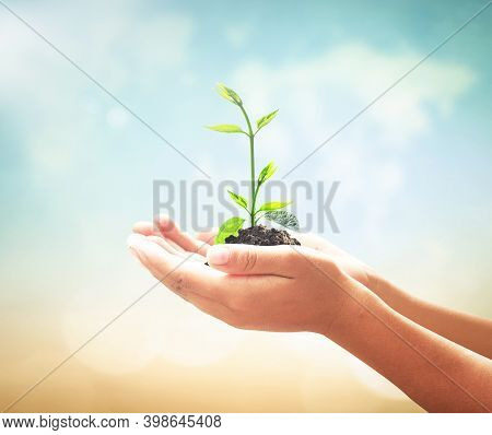 World Environment Day Concept: Human Hands Holding Small Tree Over Blurred World Map Of Clouds Backg