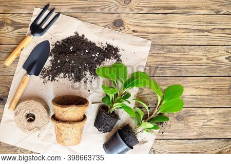 Gardening Equipment With Plants And Soil Pile, Wooden Table Hobbies And Leisure, Home Gardening, Cul