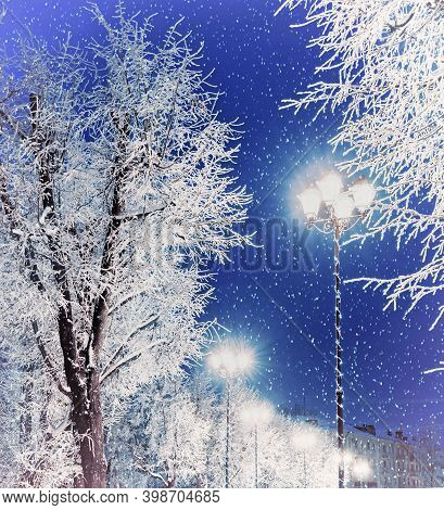 Christmas night, Winter Christmas scene. Winter Christmas landscape night view with shining lantern among the trees and falling snow. Winter Christmas  scene of colorful city night with Christmas and New Year mood - snowy winter Christmas background
