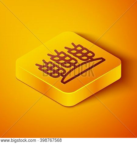 Isometric Line Cereals Set With Rice, Wheat, Corn, Oats, Rye, Barley Icon Isolated On Orange Backgro