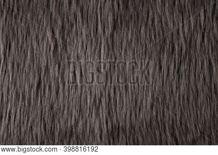 Gray Fur Downy Fluffy Texture And Background