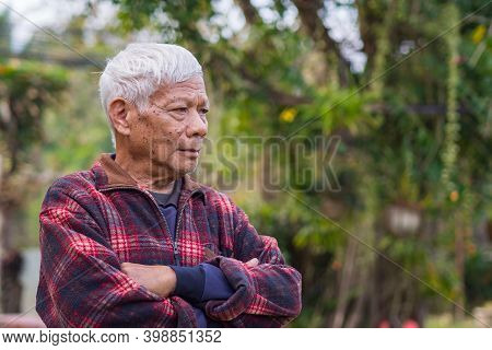 Portrait Of Senior Man Arms Crossed And Looking Away While Standing In A Garden. Space For Text. Con