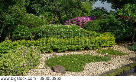 Small Gravel Garden Decorated White Gravel, Rock, Stone And Green Leaves Plant In A Backyard, Trees