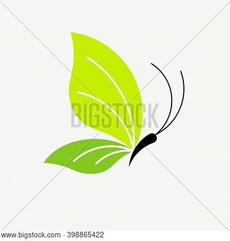 Abstract Butterfly In Green Color.  The Concept For Sustainable Living, Environmentally Friendly, Ga