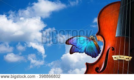 Violin On The Background Of Blue Sky With Clouds. Beautiful Blue Butterfly Morpho On Violin. Music C
